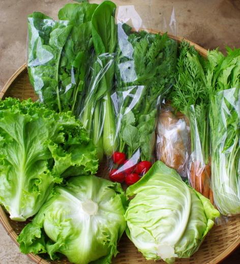今週の野菜セット(5/25~5/29着)_c0110869_13020018.jpg