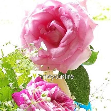 楽しい花遊び♪_d0169179_00174278.jpg