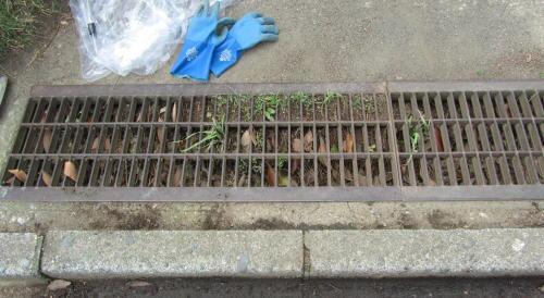地元老人会によるボランティア公園清掃_c0220597_19431676.jpg