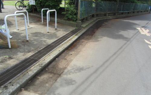 地元老人会によるボランティア公園清掃_c0220597_19480729.jpg