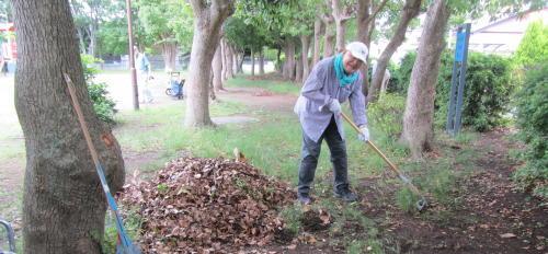 地元老人会によるボランティア公園清掃_c0220597_20062558.jpg