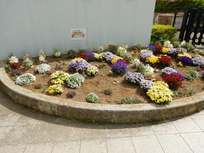 花壇の模様替え_c0401306_11332553.jpg