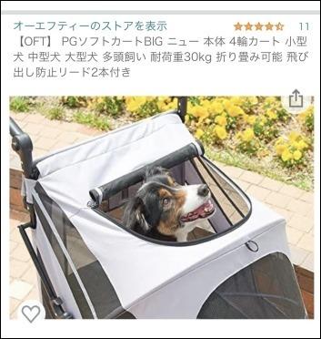 タロの愛車_b0300759_14153576.jpeg