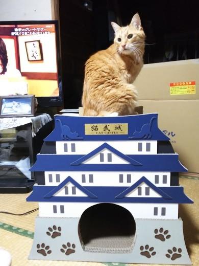 城を買った話_e0149960_22470954.jpg