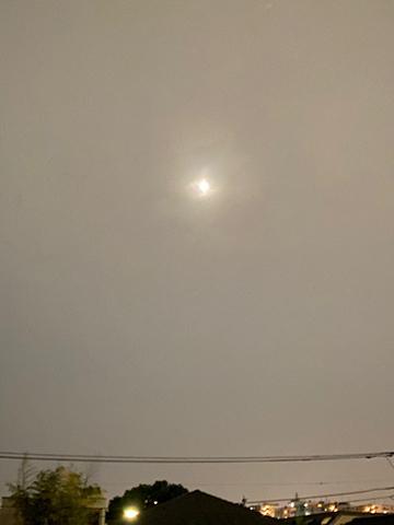 C\'est la pleine lune !_f0038600_22163889.jpg