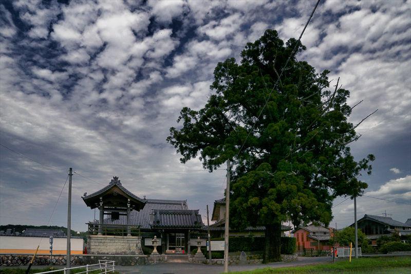 京都の家に行く途中で一寸立ち寄りです (滋賀県甲賀市)_a0105680_10235288.jpg