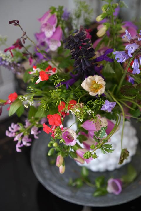 裏庭の草花を束ねて_f0127281_14234560.jpg