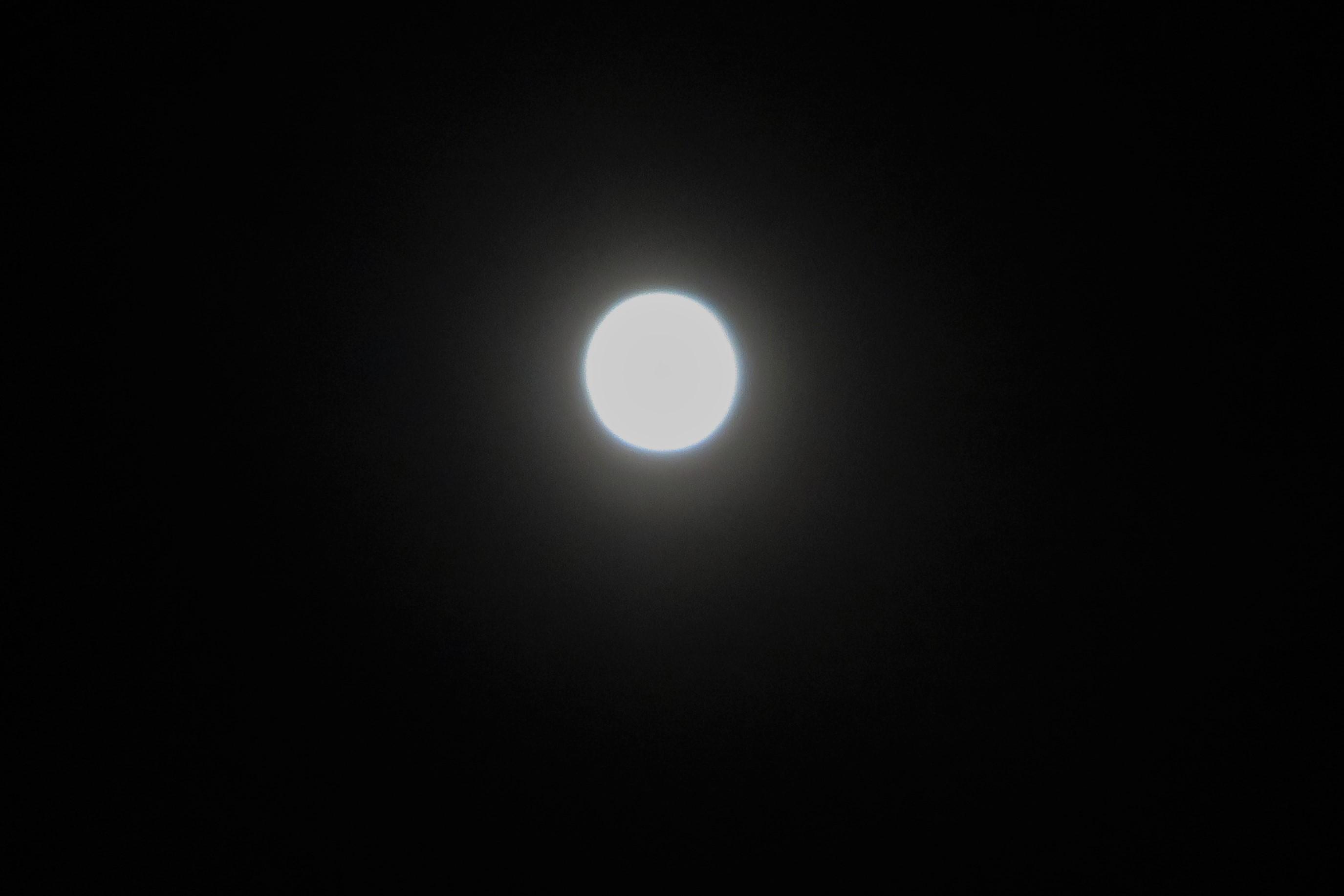 アヤメ盛りに皆既月食_a0214206_23124513.jpg