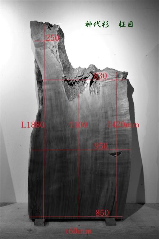 神代杉 柾目 一枚板_e0156341_19141052.jpg
