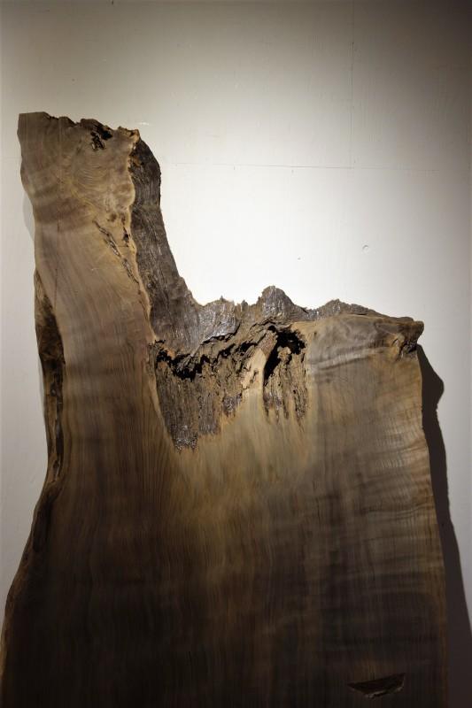 神代杉 柾目 一枚板_e0156341_19141520.jpg