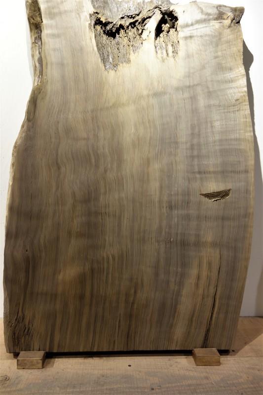 神代杉 柾目 一枚板_e0156341_19142005.jpg