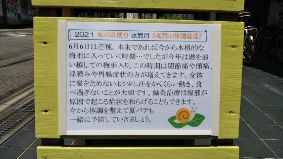 柚の森便り 「梅雨の体調管理」_f0354314_12152093.jpg