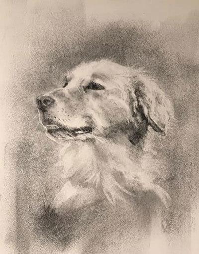 木炭犬3_e0195115_16075033.jpg