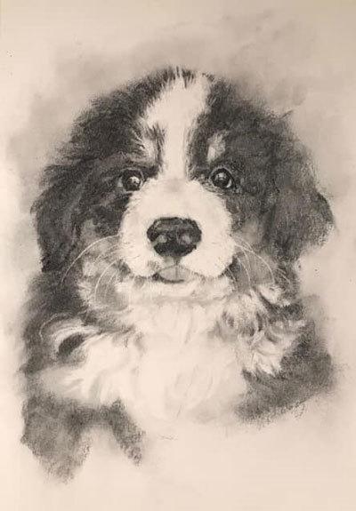 木炭犬3_e0195115_16080765.jpg