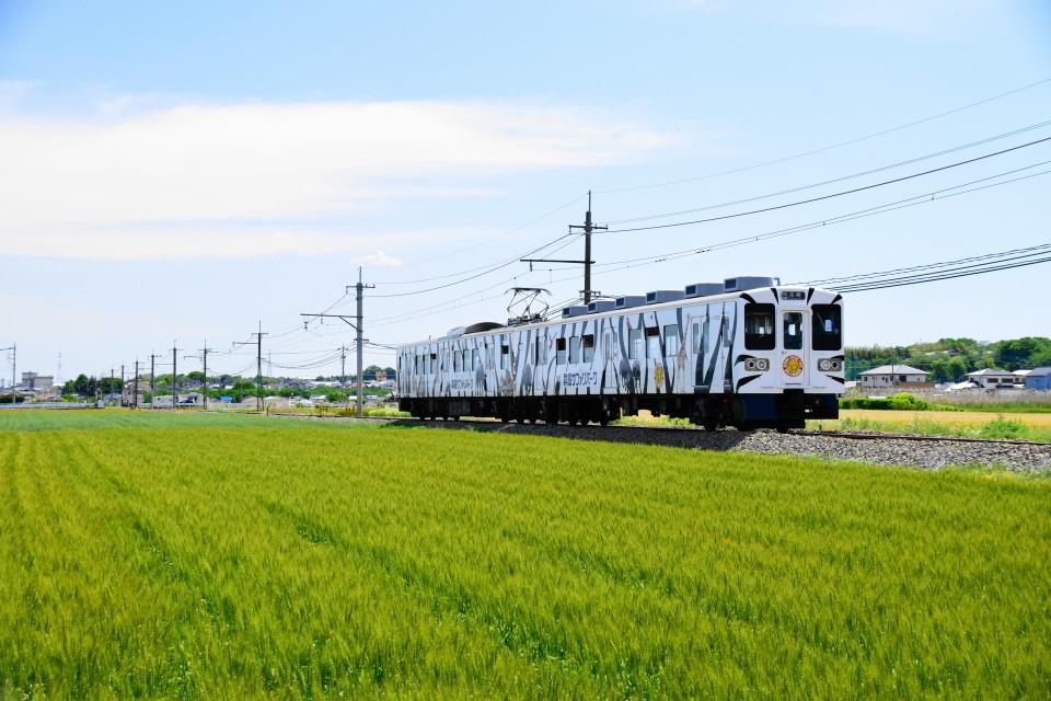 上信電鉄のカラフルな車両ー2020年5月17日ー_a0385725_22334957.jpg