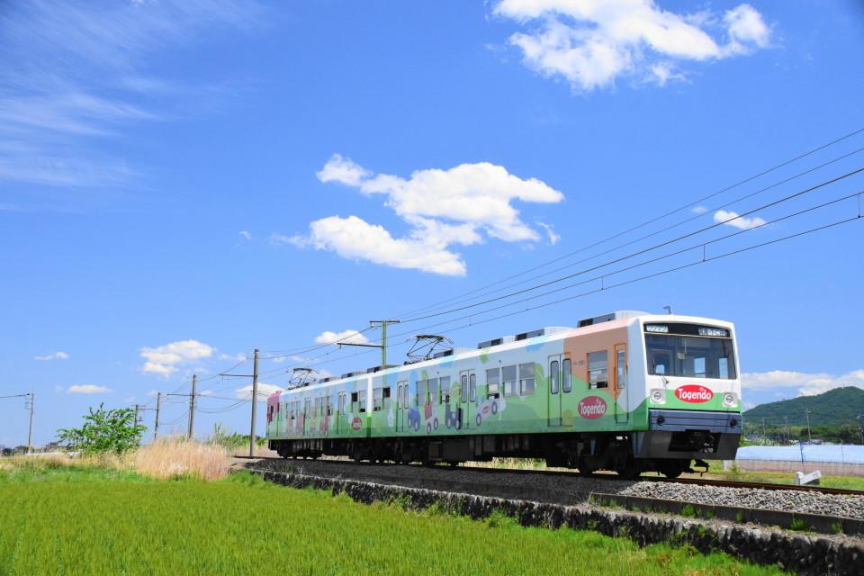 上信電鉄のカラフルな車両ー2020年5月17日ー_a0385725_22342435.jpg