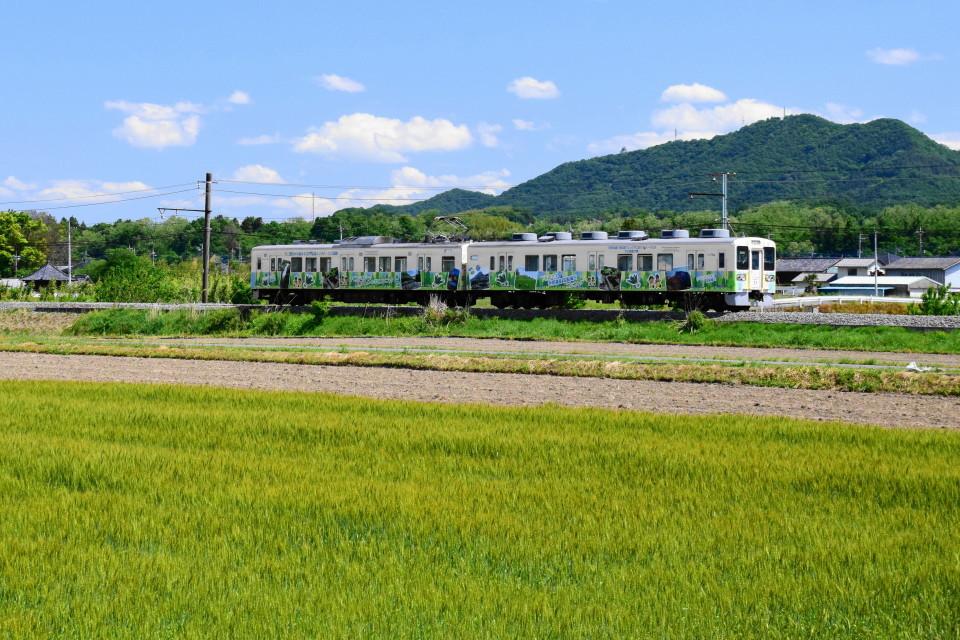 上信電鉄のカラフルな車両ー2020年5月17日ー_a0385725_22343003.jpg