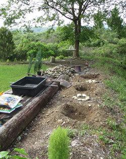 山小屋に「コニファースカイロケット」を植える_d0130640_16470322.jpg