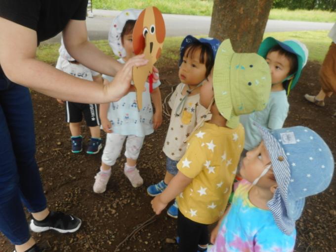 Baby Ladybugs Everywhere!_d0148342_11354770.jpg