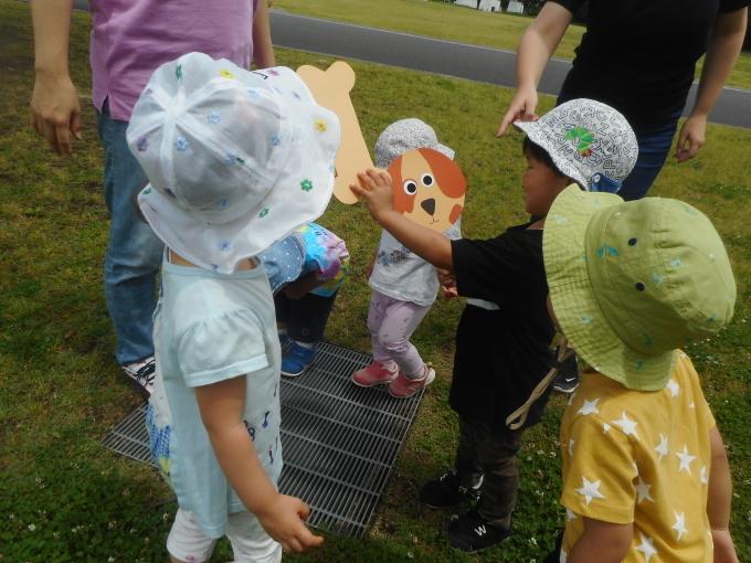 Baby Ladybugs Everywhere!_d0148342_11365799.jpg