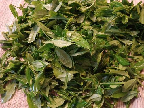 カナダ産お茶摘み 400g_a0173527_13122443.jpg