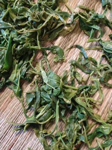 カナダ産お茶摘み 400g_a0173527_13160919.jpg