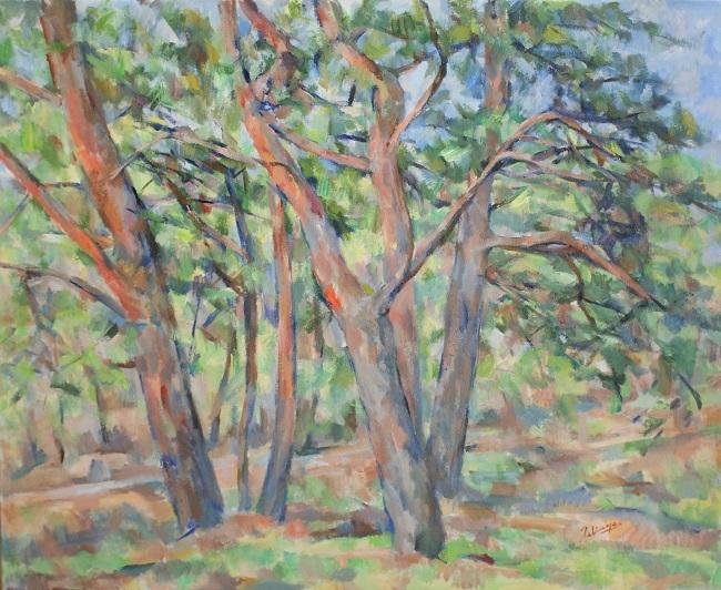 赤松の林(1)_c0236929_10585233.jpg