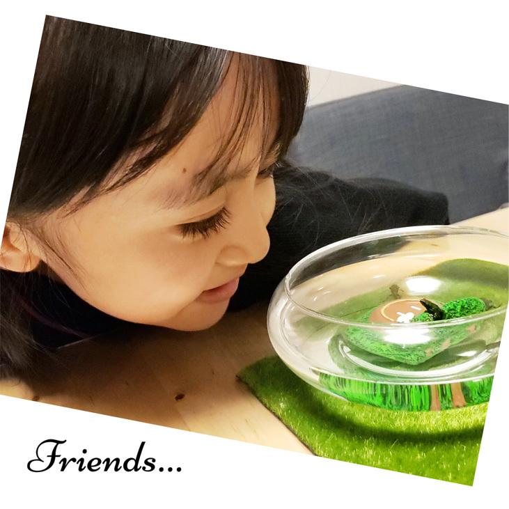 カエルさんとの優しい思い出。_d0224894_00460431.jpg