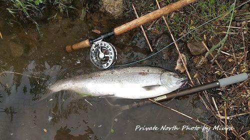昨日の釣り_d0261148_08210855.jpg