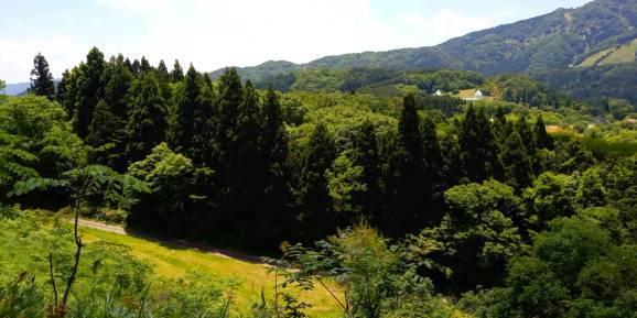 Kan-nabe-yama~神鍋山~_a0292294_21025037.jpg