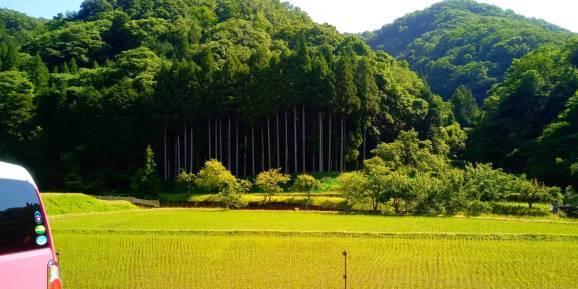 Il paesaggio che mi piace._a0292294_22051962.jpg