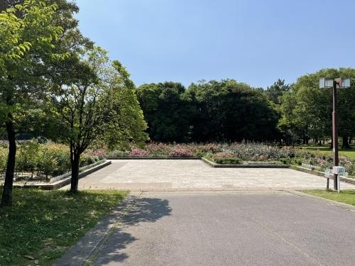 公園散策_f0373339_21474265.jpeg