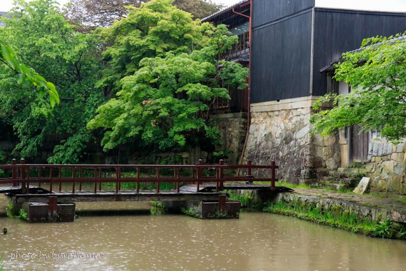 八幡堀沿いの宿「旅籠 八」_b0055171_11141211.jpg