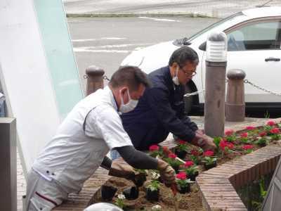 ガーデンふ頭総合案内所前花壇の植替えR3.5.24_d0338682_08590959.jpg