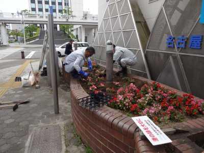 ガーデンふ頭総合案内所前花壇の植替えR3.5.24_d0338682_08593419.jpg