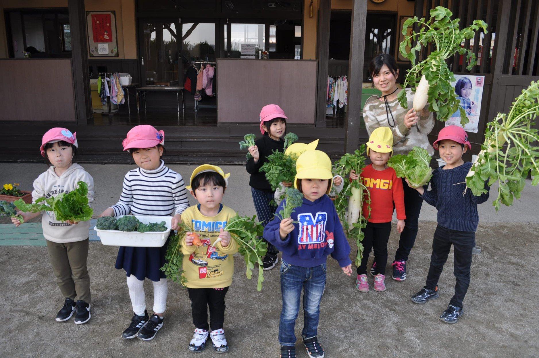 園庭の畑_a0323443_18253334.jpg