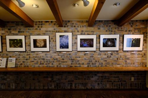 風景写真Award2020展・奈良展(奈良県橿原市) 【6/2〜6/30開催】_c0142549_01193932.jpg