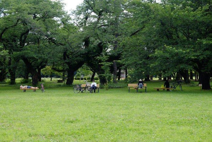江戸東京たてもの園が再開した。_e0129750_16003284.jpg