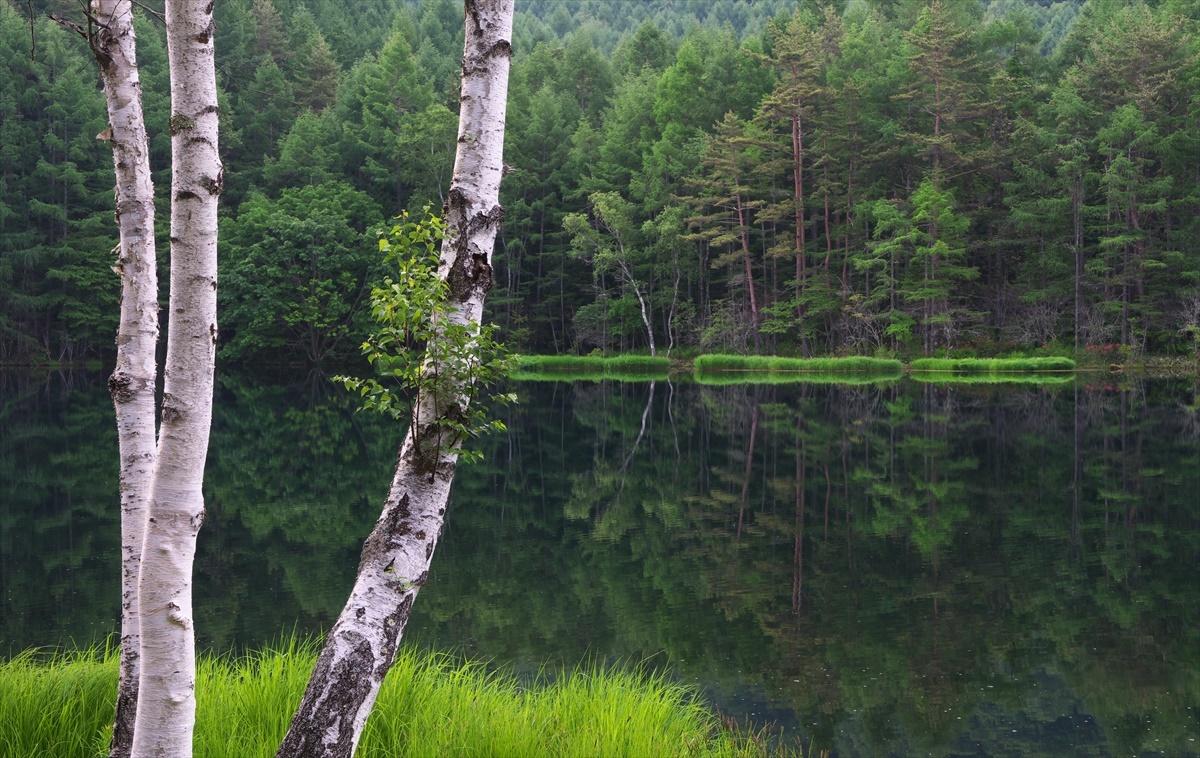 閑寂の池畔_f0018464_09402384.jpg