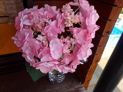 夏を想わせる花_f0203094_11152628.jpg