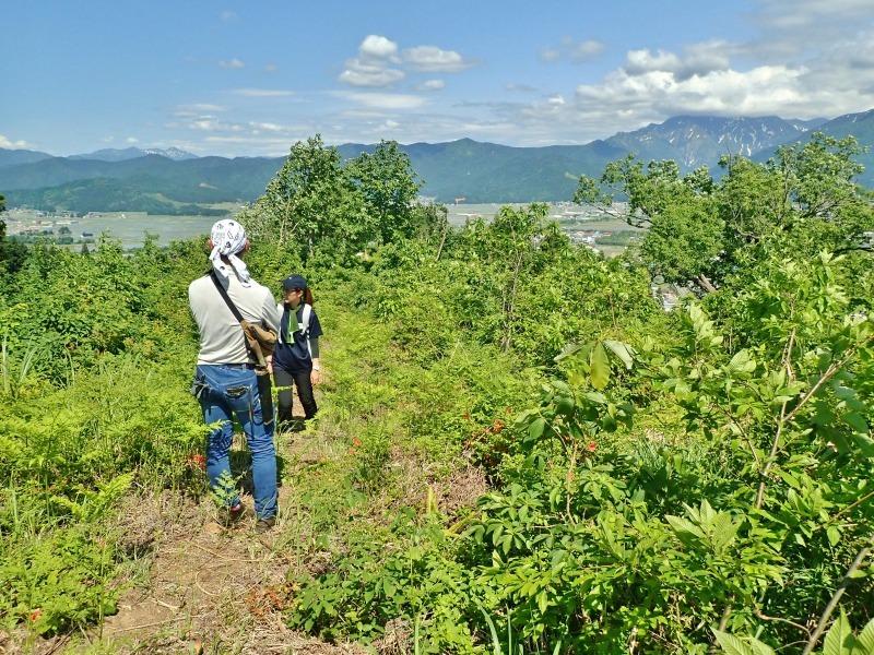 浦佐の西山へ二つの城跡を巡るコースへ_c0336902_21465744.jpg