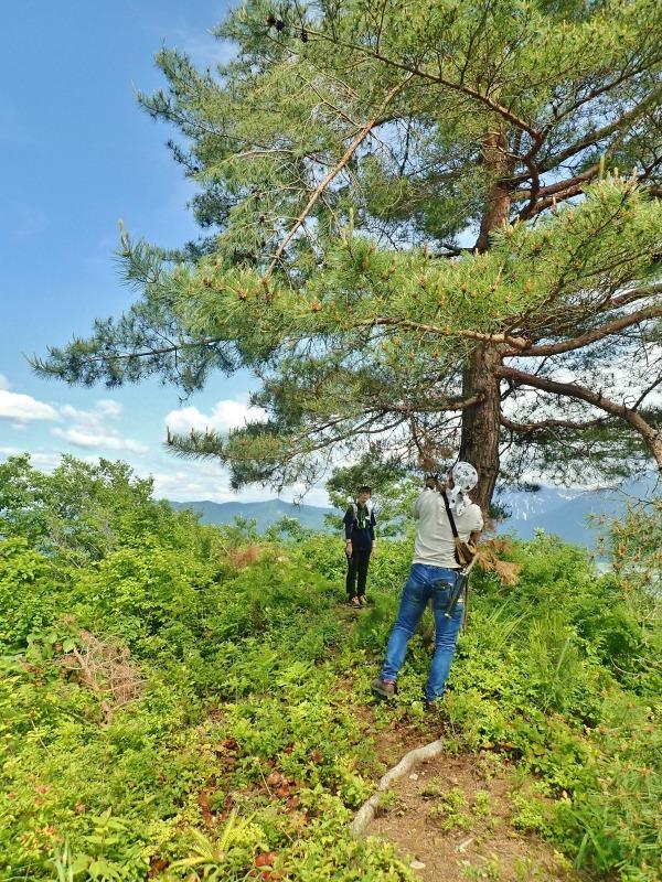 浦佐の西山へ二つの城跡を巡るコースへ_c0336902_21470613.jpg