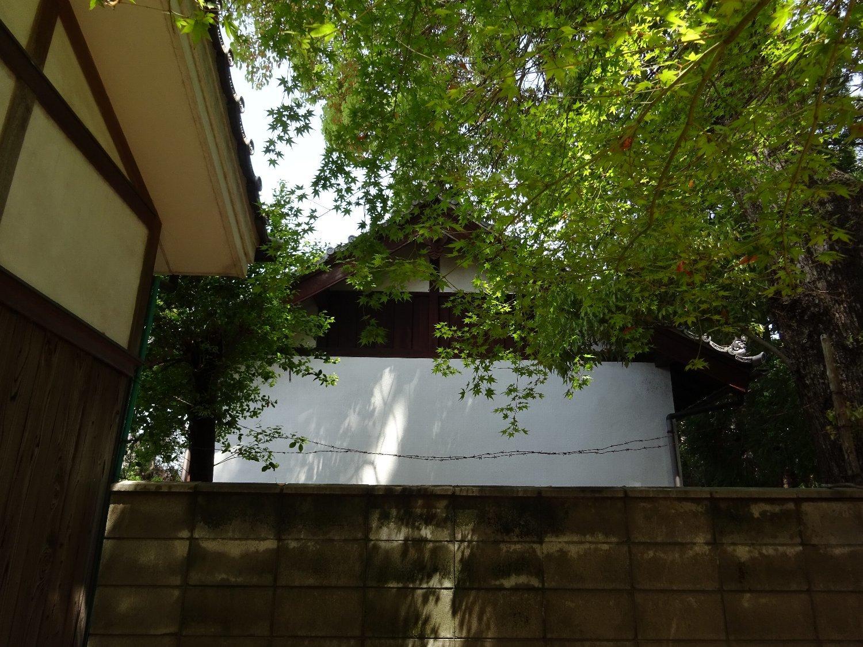女九神社(茨木市)_c0112559_07181871.jpg
