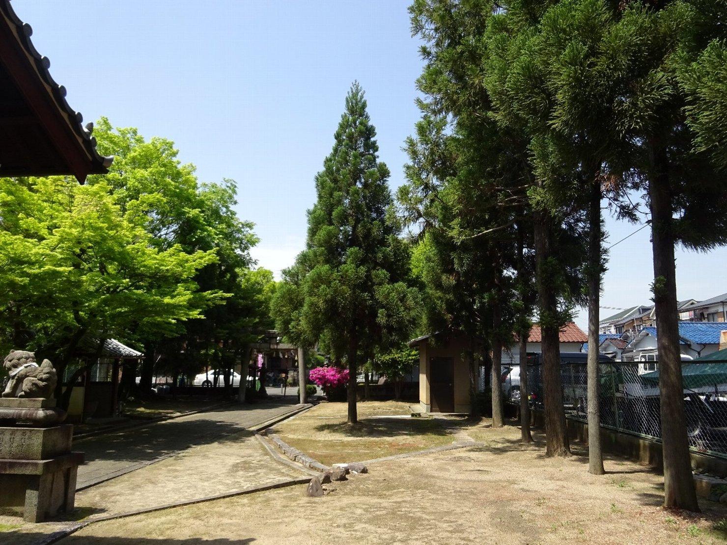 女九神社(茨木市)_c0112559_07190984.jpg