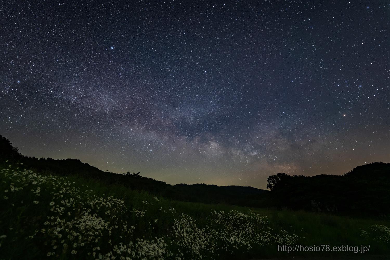 季節の花と銀河_e0214470_10283146.jpg