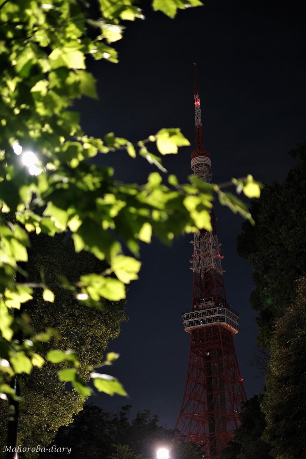 Lights off_b0362781_17330102.jpg