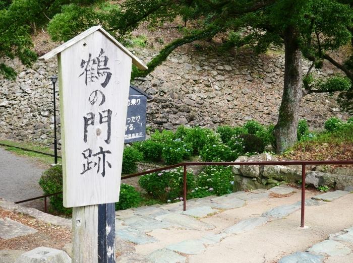 和歌山城アジサイ園  2021-06-06 00:00_b0093754_21404557.jpg