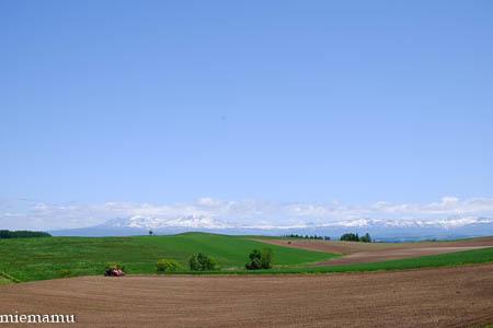 新緑のマイルドセブンの丘から~2021年6月1日_d0340565_19351015.jpg