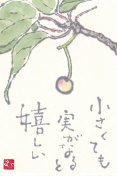 サクラの実「小さくても実がなると嬉しい」_b0124466_16561831.jpg
