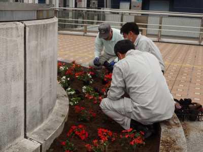 名古屋港水族館前花壇の植栽R3.6.2_d0338682_14561337.jpg